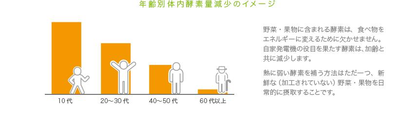 年齢別体内酵素減少のイメージ