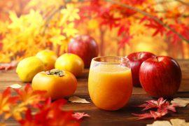 柿・みかん・りんご・レモンのジュース